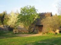 Reetgedecktes Haus im Museumsdorf