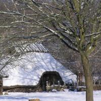 Winterbild 01